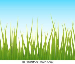 green grass, blue sky seamless background