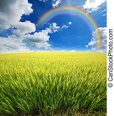 green grass blue sky