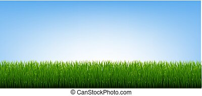 Green Grass Border And Blue Sky Background
