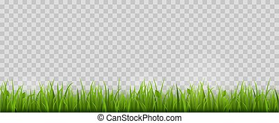grass border no background translucent green grass border isolated vector illustration grass border isolated isolated on transparent background