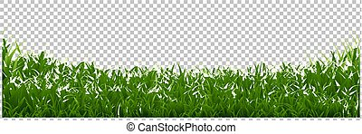 Green Grass Border Transparent Background
