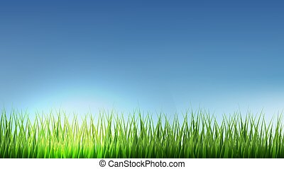 Green Grass Border With Blue Sky