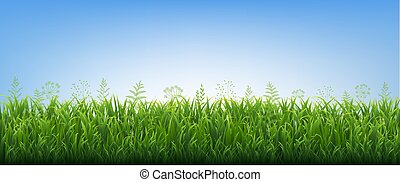 Green Grass Border With Flowers Blue Background