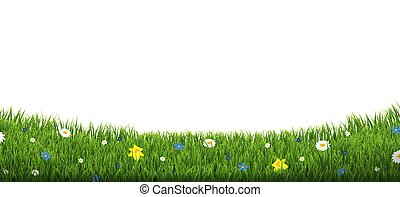 Green Grass Border With Flowers Isolated Transparent Background