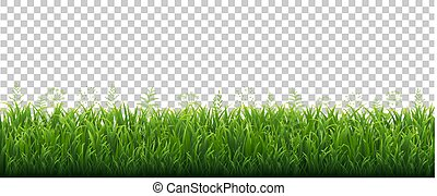 Green Grass Border With Flowers Transparent Background
