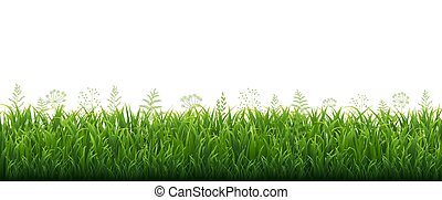 Green Grass Border With Flowers White Background