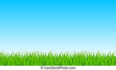 Green Grass Border With Sky. Vector Illustration