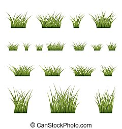 Green grass bushes set