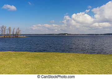 Green grass by the lake on a sunny spring day