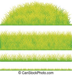 green grass design element