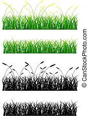 Grass - Green Grass