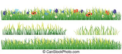 Green grass and flowers on the white