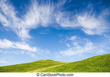 Green grass field against blue sky