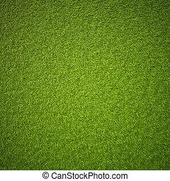 Green grass field background texture.