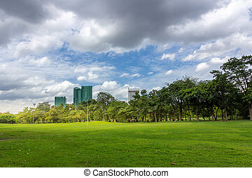 Green grass field in park with city buildings against cloudy sky
