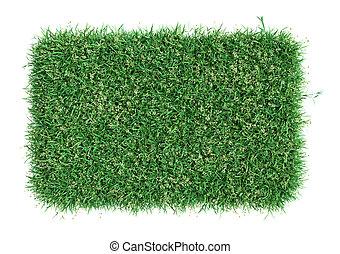 Green grass field. Meadow template for design