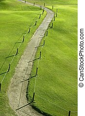 Green grass field meadow with winding road
