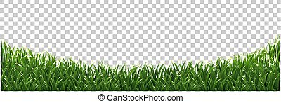 Green Grass Frame Isolated Transparent background