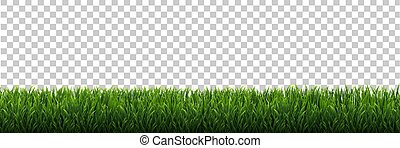 Green Grass Frame Isolated