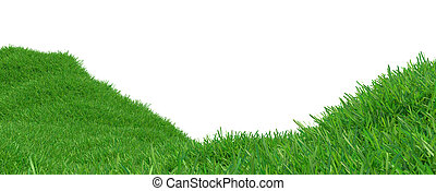 Green grass growing on hills with white background top view. 3d rendering