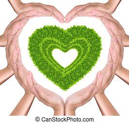 green grass heart in hands