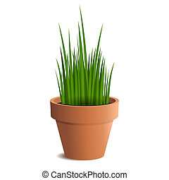 Green grass in a pot isolated on white background. Vector