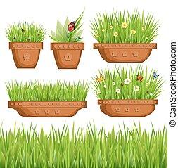 green grass in pots