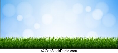 Green Grass Isolated Blue Background