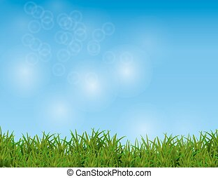 Green Grass Isolated on Sparkling Blue Sky Background