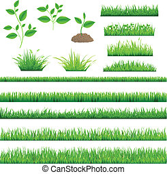 Green Grass, Isolated On White Background, Vector...