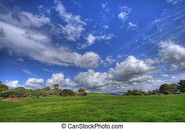 Green Grass Landscape