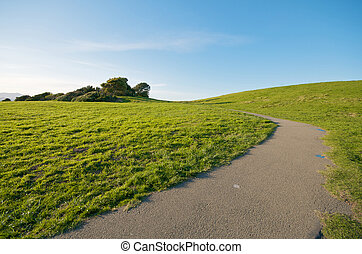 Green Grass Landscape and blue sky California