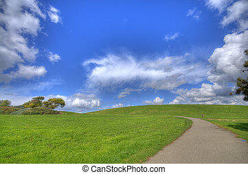 Green Grass Landscape with path