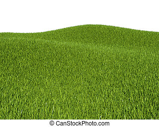 Green grass meadows and hills and white background