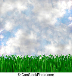 Green Grass Meets Blue Sky - A green, grassy field and...