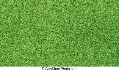 green grass motion background
