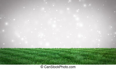Green grass natural background with bokeh particles. Seamless loop