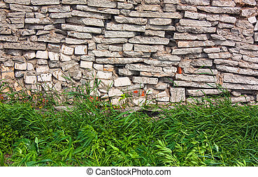 grass on a background of stone wall