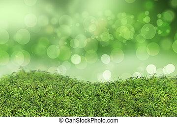 Green grass on a bokeh lights background
