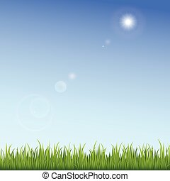 Green grass on a clear blue sky background