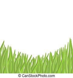 Green grass on a white background. Vector illustration garden.
