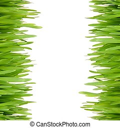 Green grass on background with space for text