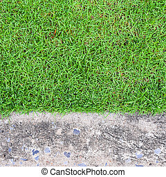 green grass on cement stone background