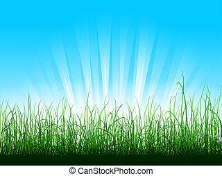 Green grass over blue sky