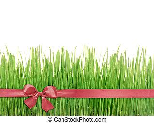 Green grass red silk ribbon