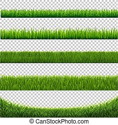 Green Grass Set Border Isolated White Background