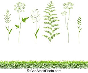 Green Grass Set Isolated White Background
