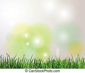 Green grass spring background