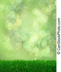 Green grass spring fantasy bokeh