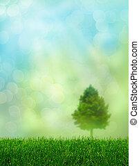 Green grass spring fantasy